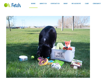 Oh Fetch LLC website